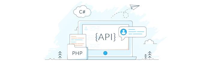 Integrer dit software direkte med vores gateway